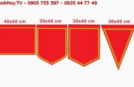 in cờ lưu niệm lấy gấp tại đà nẵng 0935 44 77 49 - 0901 99 40 88 anhhuy.tv